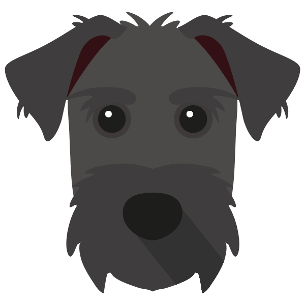 Pepper & Pepper icon