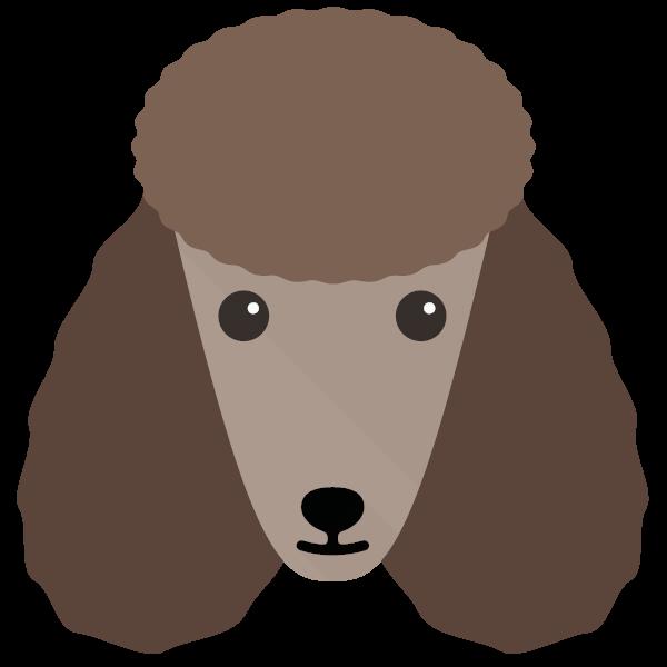 poodle-02 Yappicon