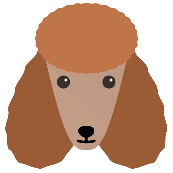 Dolly icon