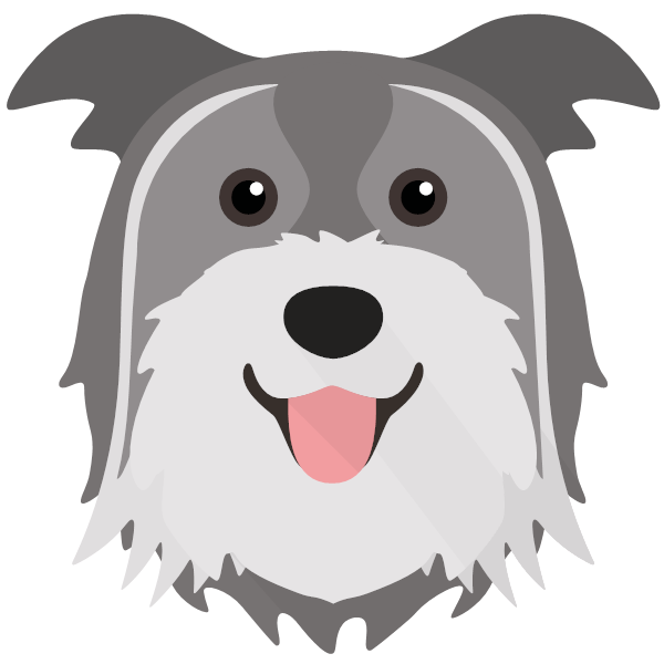 the Pyrenean Shepherd