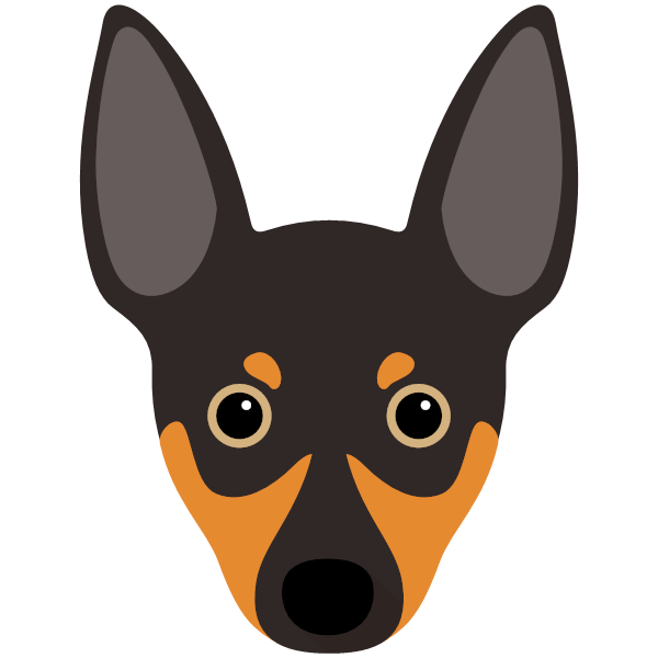 ratterrier-02 Yappicon