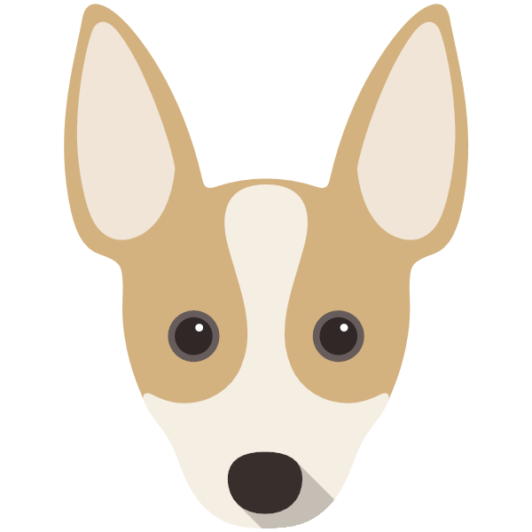 ratterrier-05 Yappicon