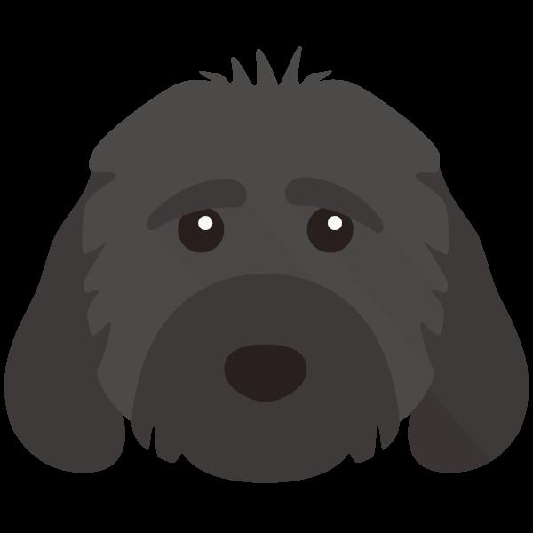Fiona icon