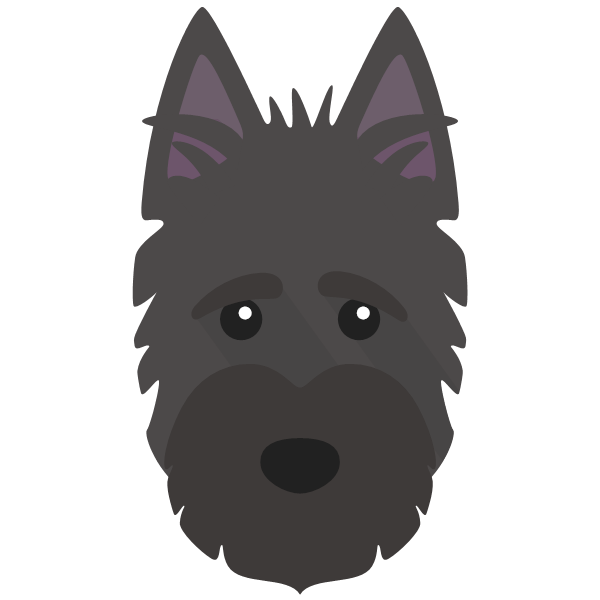 scottishterrier-01 Yappicon