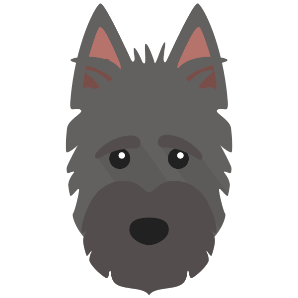 scottishterrier-05 Yappicon