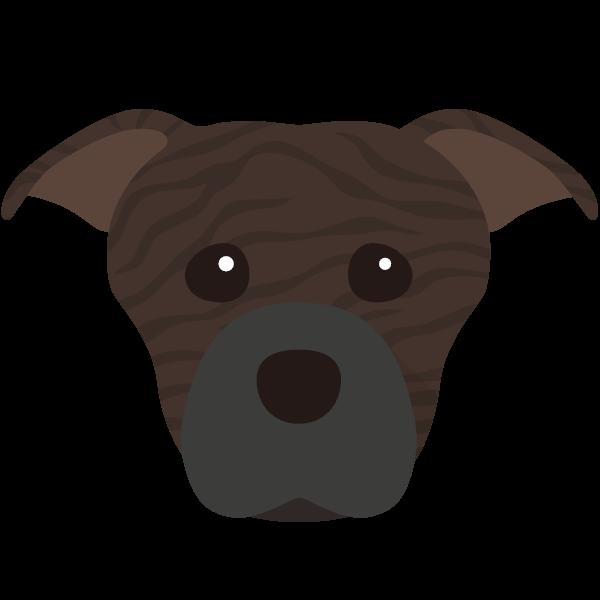 Daisy & Gizmo icon