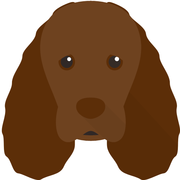 sussexspaniel-02 Yappicon