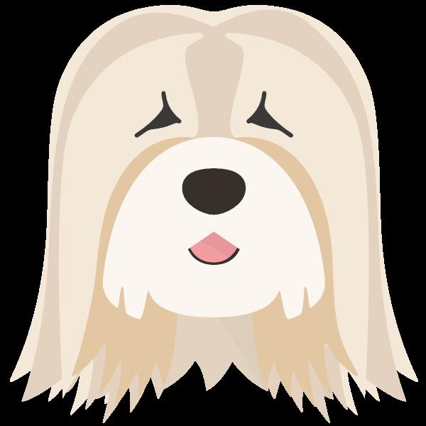 Darcy icon