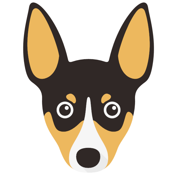 the Toy Fox Terrier