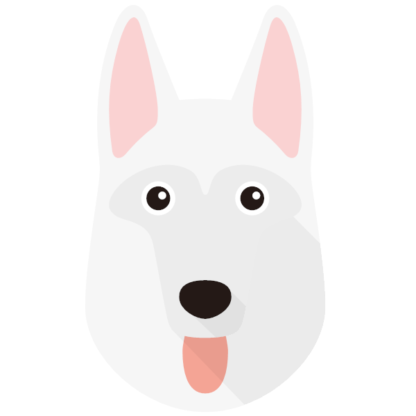 the White Swiss Shepherd Dog