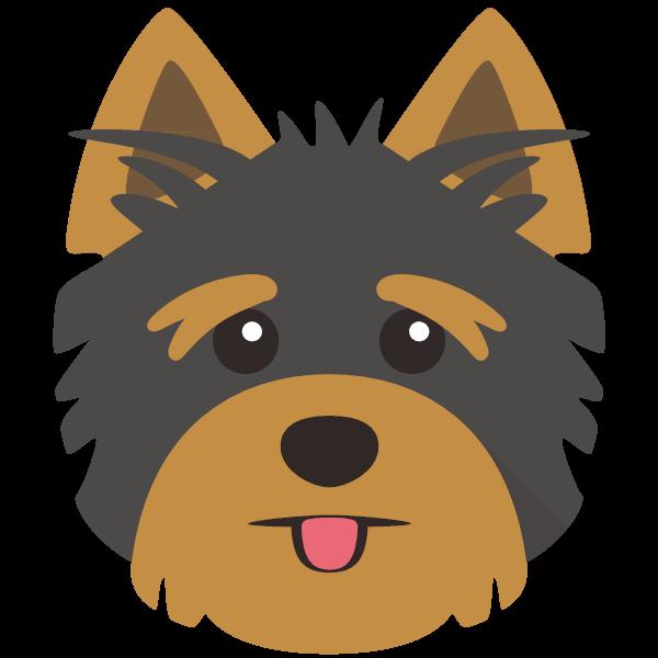 Maisie icon